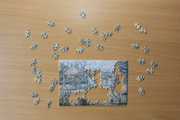 Wie bei einem großen Puzzle: es macht große Freude, zu sehen, wie sich das Bild weiterentwickelt.