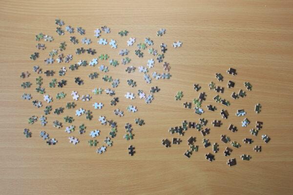 150 kleine Teilchen vor einem auf dem Tisch – sieht dann noch viel weniger aus – aber es ist schon einiges…